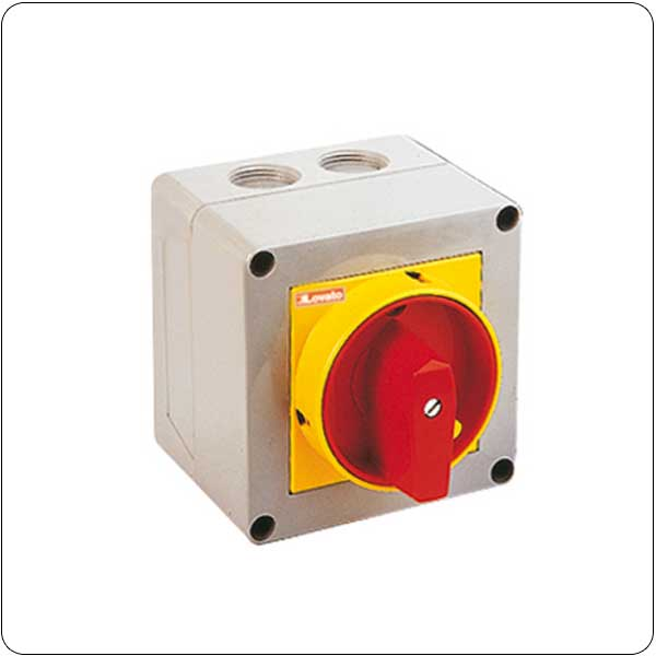 P25 version in enclosure with padlockable rotating handle. ON/OFF switches